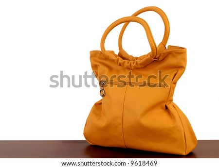 Female leather bag on a white background