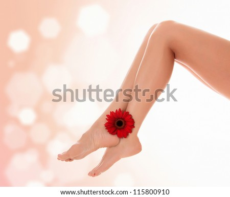 Female legs with red gerbera flower on pastel blurred background with a space for your text