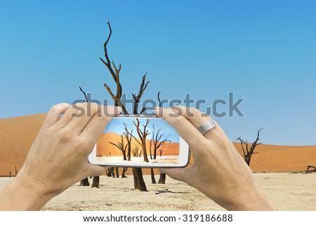Female photographer with smartphone takes a picture of the gnarled trees of the dead vlei salt lake in Sossuvlei Namibia. - stock photo