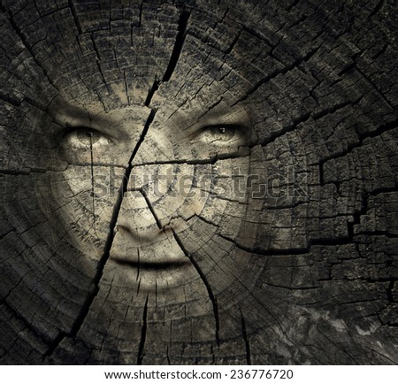 Female portrait in a trunk crack texture - stock photo