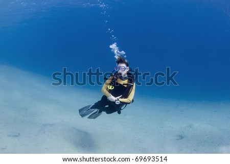 Female scuba dive over bright white sand in the Red Sea, Egypt - stock photo