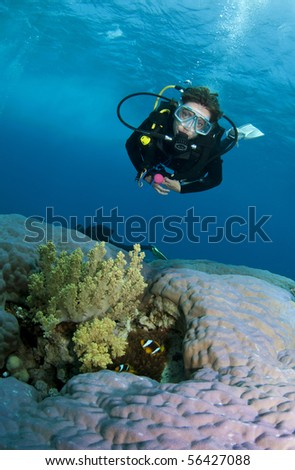 female scuba diver on amazing coral reef - stock photo