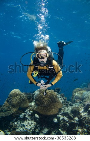 Female scuba diver over a beautiful coral reef - stock photo