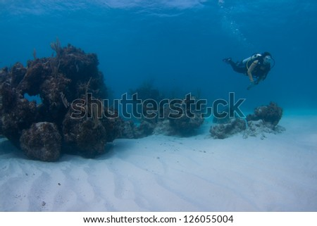 Female scuba diver over a coral reef in the Bahamas - stock photo