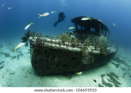 Female scuba diver swimming underwater near a shipwreck in the Bahamas - stock photo