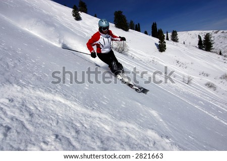 Female skier - stock photo