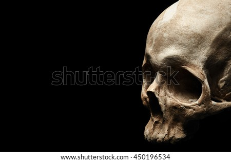 Female skull isolated on black background