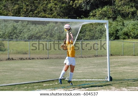 Female soccer keeper saves the shot - stock photo