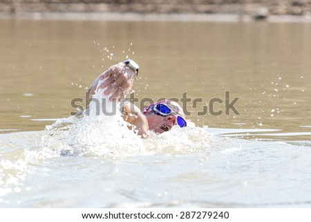Female Triathlete swimming in a dam while training for a triathlon. - stock photo