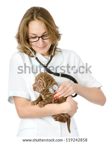 Female veterinarian examining a sharpei puppy dog. isolated on white background
