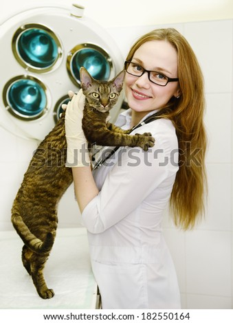 female veterinarian with tabby cat in vet office - stock photo
