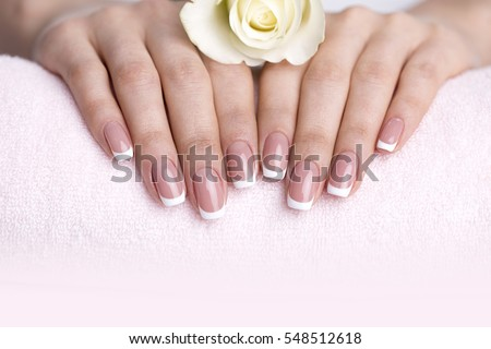 female well-groomed hands with white rose