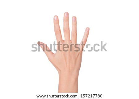 Female woman hand  isolated on the white - stock photo