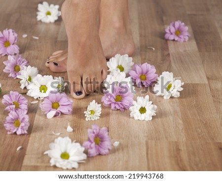 Feminine feet and flowers on a parquet floor. Copy space in the right. - stock photo