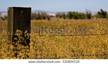 fence and field - stock photo