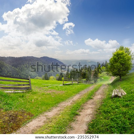 fence and lonely tree near the path through meadow  on the hillside. forest in fog on the far hill and mountain. - stock photo