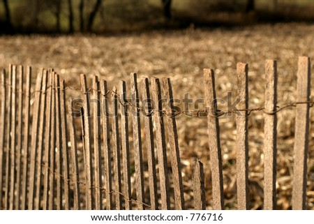 Fence at sunset - stock photo