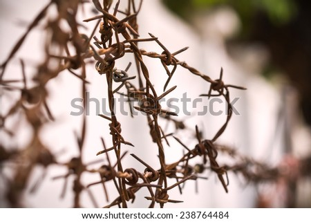 Fence barbed wire railing is rusty - stock photo
