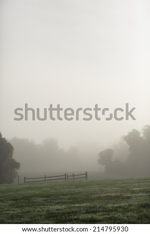 Fence, field and trees in fog