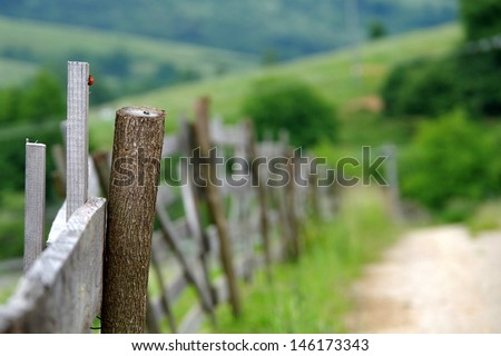 Fence for sheep