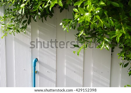 fence have tree , blue tube and white wall