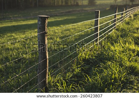 Fence in a field in a rural area of Galicia with the evening light