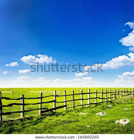Fence in the green field with white camomile flowers under blue cloud sky. Beautiful landscape