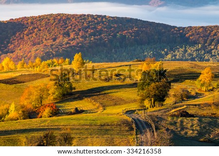 fence near the meadow and trees on the hillside. forest in fog on the mountain top in sunset light