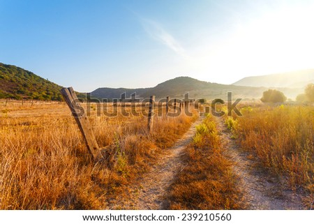 fence on the field a farm, yellow grass at the farmer's field in the rays of sunrise, Italy - stock photo
