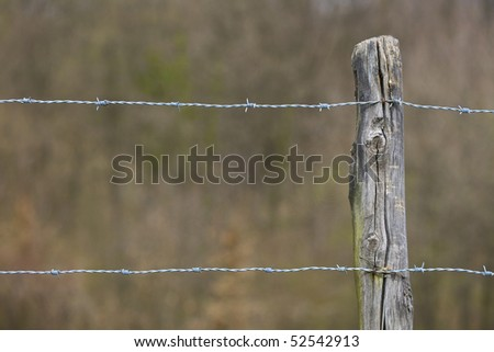 Fence thorn wire on wood stud 01 - stock photo