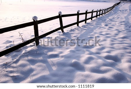 fence  under the snow  in  winter a sunny cold day