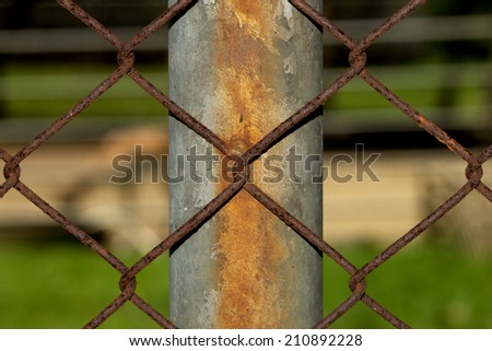 Fence Wire Vintage