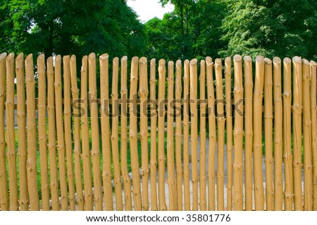 Fence with slats that show the natural wood pattern