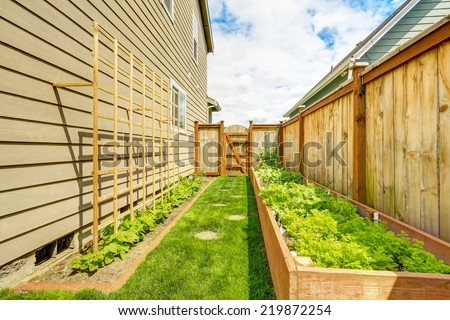 Fenced backyard with garden beds, wooden grid attached to the wall - stock photo