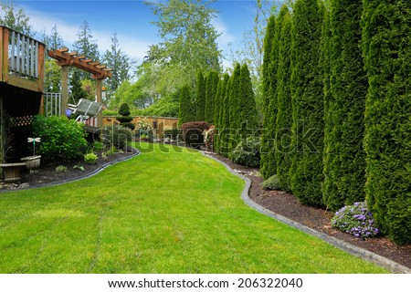Fenced backyard with landscape. Decorative trees alongside with fence and green lawn. View of wooden deck with garden swing - stock photo