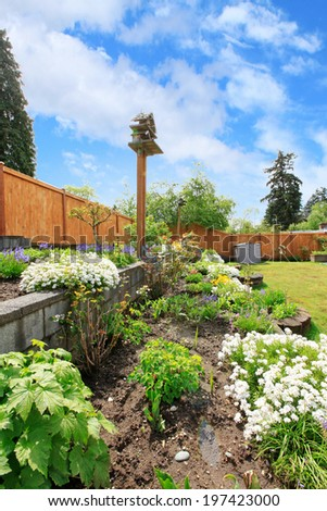 Fenced backyard with lawn, terrace flower beds. Close up view of flower bed - stock photo