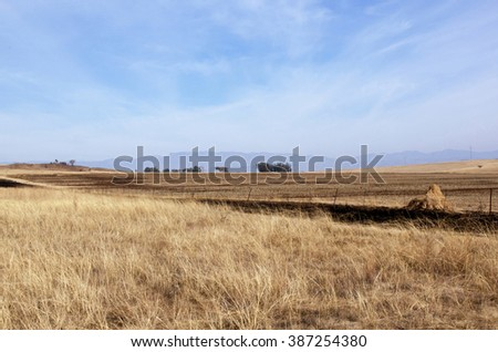 Fenced field of dry grass in south african rural winter landscape - stock photo