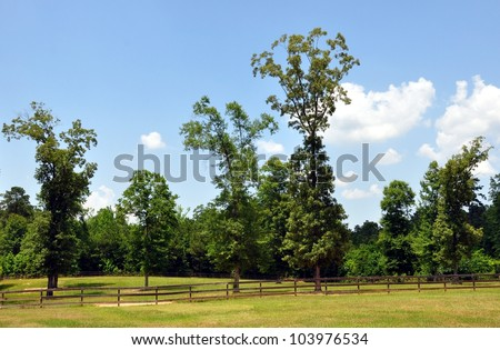 Fenced Rolling Pasture Land With Trees - stock photo