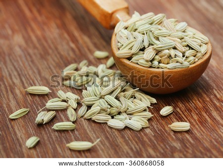 Fennel seeds in a wooden spoon on wooden surface - stock photo