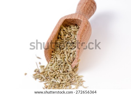 Fennel seeds in the bailer - full focus on fennel seeds - stock photo