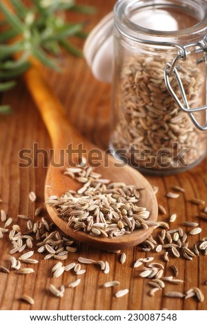 fennel seeds in wooden spoon - stock photo