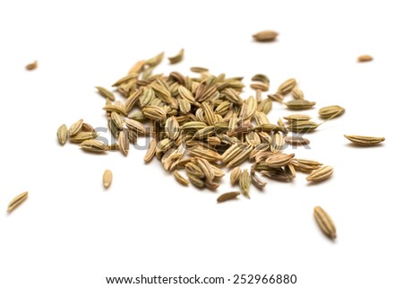Fennel seeds isolated on white background - stock photo