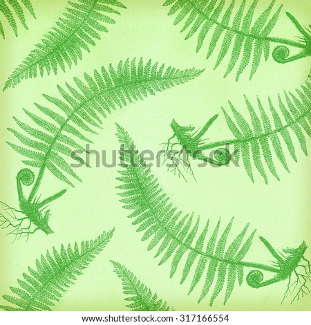 Fern background with texture - stock photo