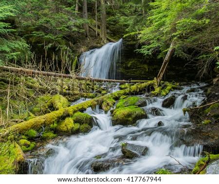 Fern Falls in landscape - stock photo