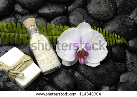 Fern with orchid and massage oil on zen stones background