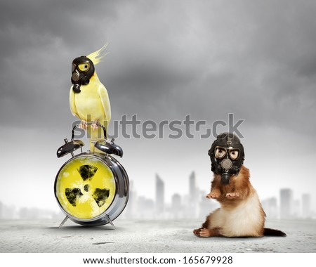 Ferret and parrot in gas masks. Ecology concept - stock photo