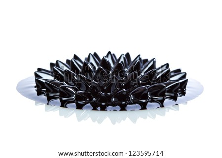 Ferrofluid structure induced by a neodymium magnet close-up. Ferrofluid is a colloidal liquid of nanoscale particles in a carrier fluid that becomes magnetized by approaching a magnet. - stock photo
