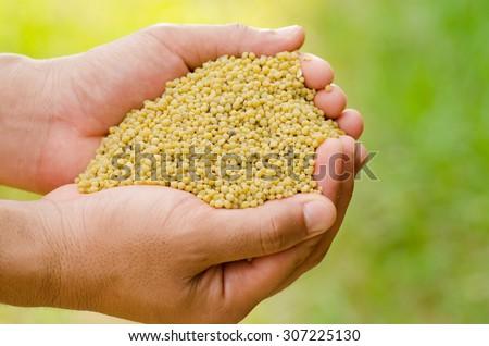 fertilizer,farmer hand holding plant chemical fertilizer over green background - stock photo