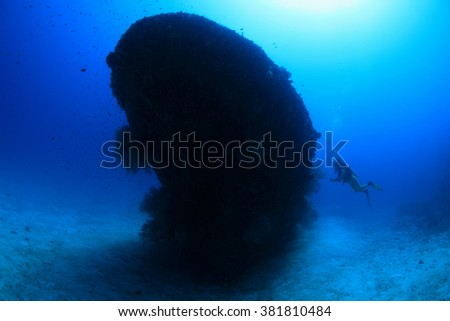 Fesdu shipwreck and scuba diver in the indian ocean - stock photo