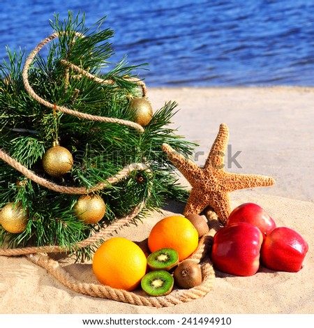Festive christmas tree with starfish and ripe fruits on the sand on beach